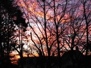 sunrise over the boulevard II